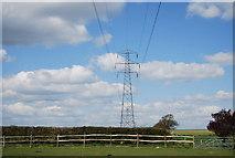 TQ8115 : Pylon, Downoak Farm by N Chadwick