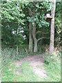 TL7057 : Footpath by Keith Evans