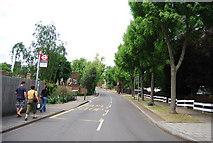 TQ2472 : Victoria Drive by N Chadwick