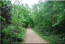 TQ2372 : Capital Ring, Putney Heath by N Chadwick