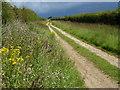 TF7232 : Uphill track near Field Barn, Shernborne, Norfolk by Richard Humphrey