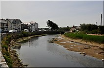 SS2006 : Bude : The River Neet by Lewis Clarke