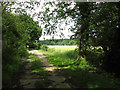 TM4079 : Bridleway Past Upper Holton by Evelyn Simak