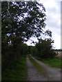 TM3958 : Footpath to Gromford Lane & entrance to Chagford by Geographer