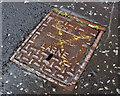 D4002 : Access cover, Larne by Albert Bridge
