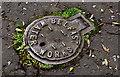 J3875 : Belfast Water Works access cover, Belfast (2) by Albert Bridge