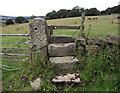 SJ8957 : Stone stile and gatepost by Jonathan Kington