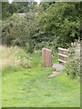 TM4361 : Footbridge on the footpath to the Sandlings Walk Path by Adrian Cable