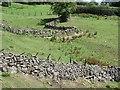 SO6176 : Dhustone dyking, Doddington by Richard Webb