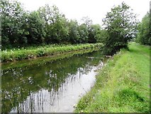 N6032 : Grand Canal near Edenderry, Co. Offaly by JP