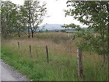 SD7656 : Bailey Lane, Tosside by Philip Platt