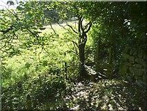 SE0026 : Stile on Hebden Royd Footpath 19, Mytholmroyd by Humphrey Bolton