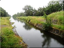 N4928 : Grand Canal from under Killeen Bridge, near Daingean, Co. Offaly by JP