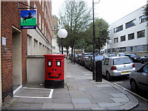 TQ2978 : A happy Postbox in Chichester Street, Pimlico by PAUL FARMER
