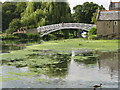 TL2470 : Godmanchester Chinese Bridge by Josie Campbell