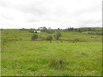 G6178 : Kilcasey Townland by Kenneth  Allen
