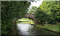 SJ5782 : Keckwick Hill Bridge by Mike Todd