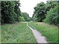 TQ4087 : Path in Bush Wood by Roger Jones