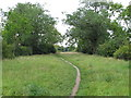 TQ3986 : Path to Bush Wood by Roger Jones