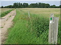 TL4100 : Public footpath near Upshire by Malc McDonald