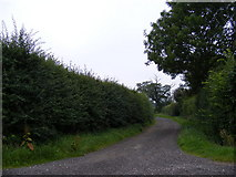 TG0826 : All User Path to Kerdiston by Adrian Cable