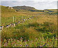 C0637 : Rough fields at Knockduff with boulder studded outcrops by C Michael Hogan
