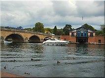 SU7682 : Boat passing Henley Bridge by Paul Gillett