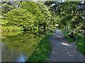 SE0026 : Rochdale Canal by David Dixon