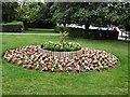 SU7682 : Flowers in Mill Meadows - Henley by Paul Gillett