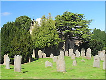 NY9257 : St. Helen's Church and churchyard, Whitley Chapel by Mike Quinn