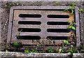 J3775 : McKeown grating cover, Belfast by Albert Bridge