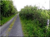 G7979 : Road at Meenawullaghan by Kenneth  Allen