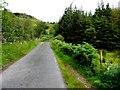 G6977 : Road at Gortnamuck by Kenneth  Allen