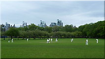 NT2572 : Cricket in the Meadows by kim traynor