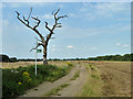 TQ4058 : Norheads Lane by Robin Webster