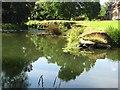 SO5269 : Weir, Barratts Mill by Richard Webb