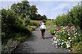 NT6424 : Woodside Garden Centre by Walter Baxter