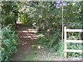 TM3764 : Footpath to Carlton Church by Adrian Cable