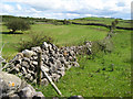 G8864 : Field walls and pasture by Jonathan Wilkins