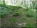 SE0917 : Site of Petty Royd, Longwood by Humphrey Bolton