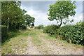 SK0526 : Footpath from Heatley Green Farm by Mick Malpass