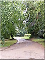 TM3677 : The entrance to Grange Farm & Chediston Chase by Geographer