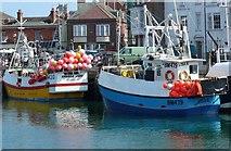 SY6778 : Fishing Boats, Weymouth Harbour by Nigel Mykura