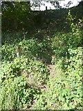 SE0026 : Path junction, Mytholmroyd by Humphrey Bolton
