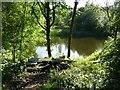 SE0026 : Fishing pond off Roger Gate, Mytholmroyd by Humphrey Bolton