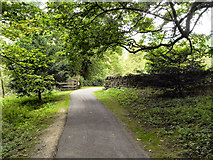 SE2768 : Fountains Abbey - Path to Fountains Hall by David Dixon