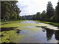 SE2869 : The Canal, Studley Royal Water Garden by David Dixon
