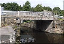 SE2519 : Double Lock Bridge by Mike Todd