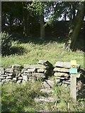 SE0026 : Hebden Royd Footpath 17 at Broad Bottom, Mytholmroyd by Humphrey Bolton