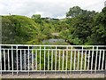 NT8906 : River Coquet from farm bridge north of Linshiels by Andrew Curtis